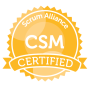 Large CSM Seal
